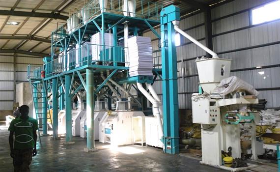 maize mill 50T