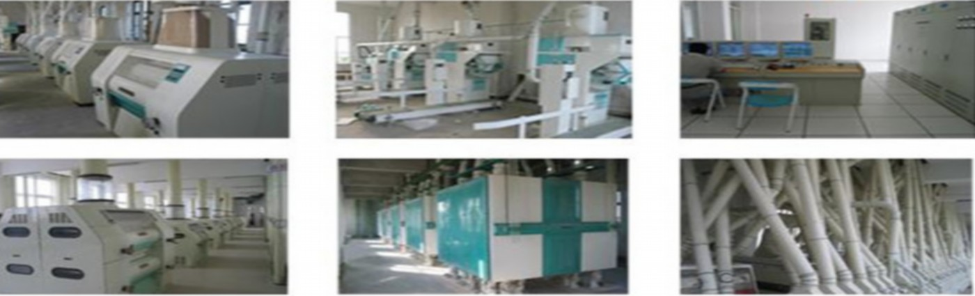 500ton-wheat-flour-mill-modified