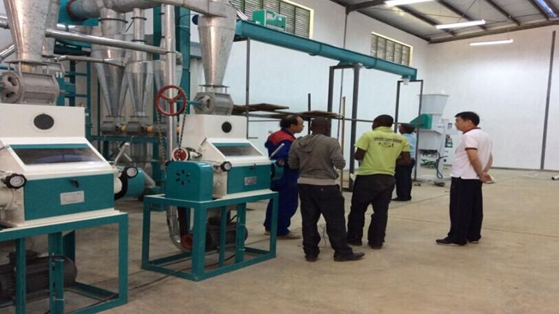 30T corn mill line testing