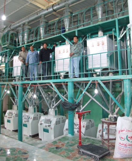 50T-wheat-mill (1)egypt