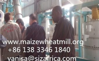 30t maize mill inspection