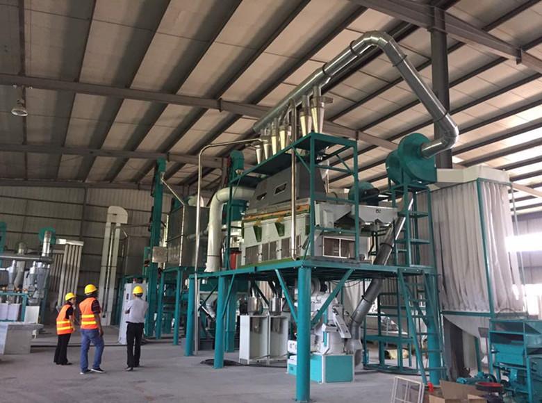 100t cada hora de molino/molienda de maíz en nuestra fábrica