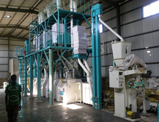 50tpd maize milling machine