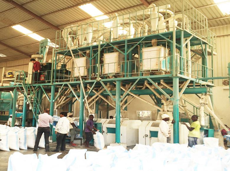 Máquina molinera de trigo 36tonne / 24hr