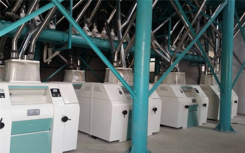 100T wheat mill installed in our factory
