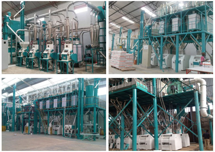 5 installed flour mill