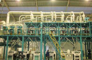100t/24hrs maize mill plant in South Africa