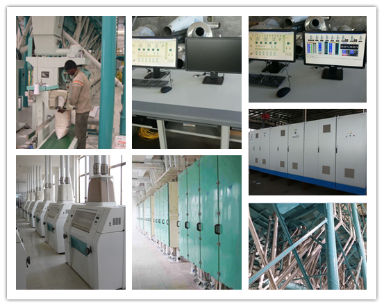 120T/24H wheat flour mill line installed in Zimbabwe designed by Hongdefa
