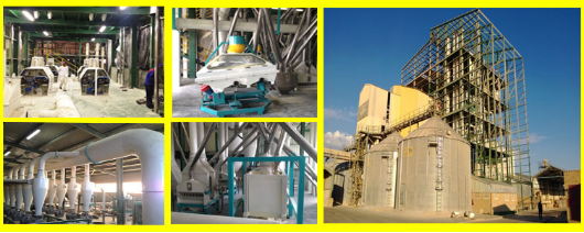 1500t/24hrs maize mill plant in South Africa