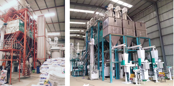 150t/24hrs maize mill plant in Zambia 240t/24hrs maize mill plant in Angola