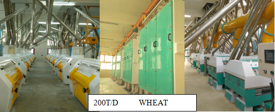 200T/24h wheat flour mill machine in Egypt