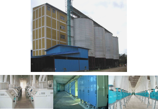 500T/24H wheat flour mill in Ethiopia