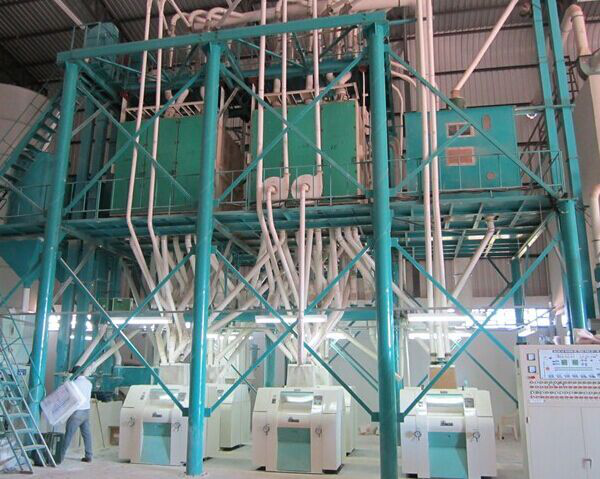 60T/24H wheat milling machine installed in Brazil