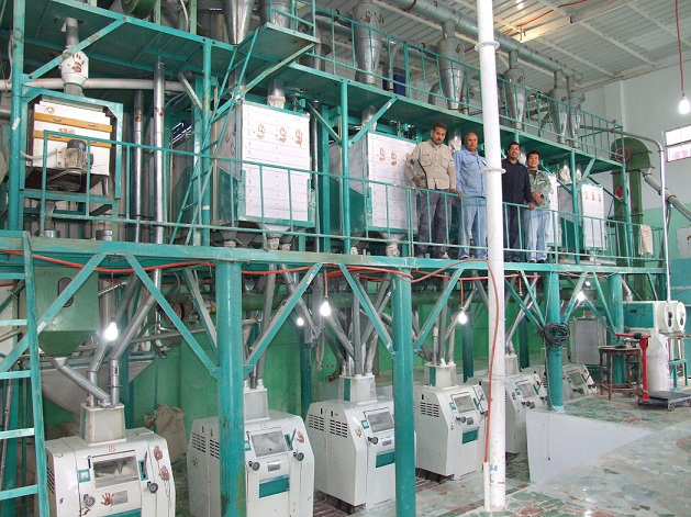 60T/24h wheat flour mill machine in Egypt