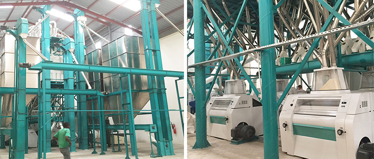 8.Maize milling machine in Hongdefa factroy