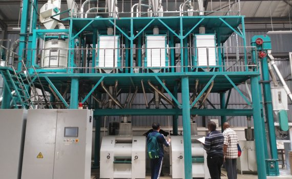 50T maize flour mill in Thika Kenya