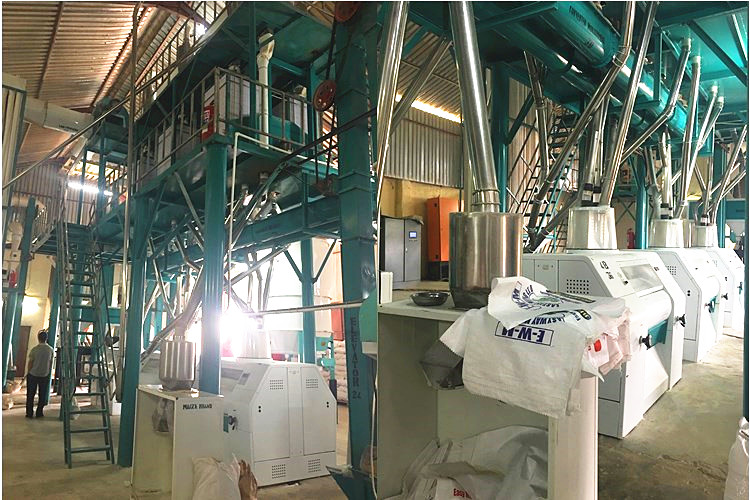 50T/24H maize mill in Zambia